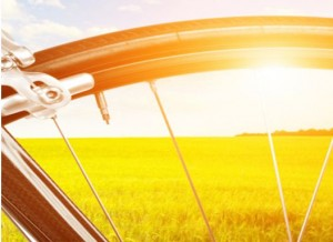 bicycle portal